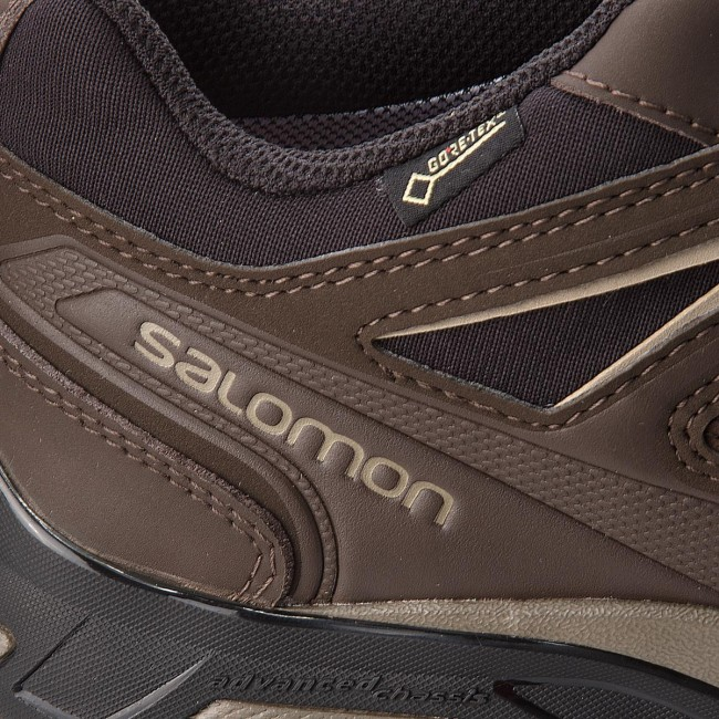 Salomon X Ultra LTR Goretex
